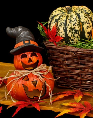 Halloween is approaching fast... will you spook, party or a bit of both?
