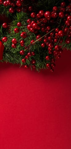 £30 & £50 festivity deals with free UK delivery
