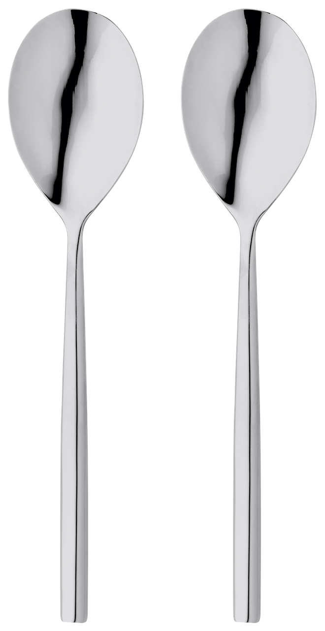 Stellar Rochester  Serving Spoon Set,