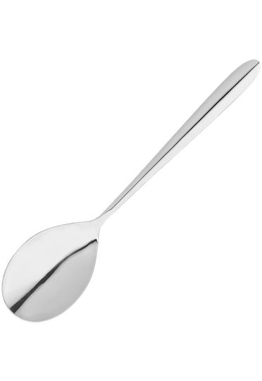 Stellar Winchester  Table Spoon