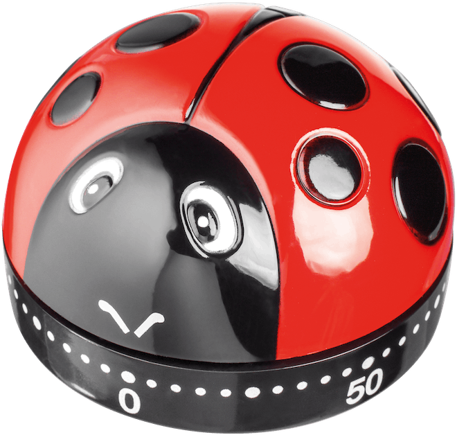 Judge Kitchen Ladybird Timer