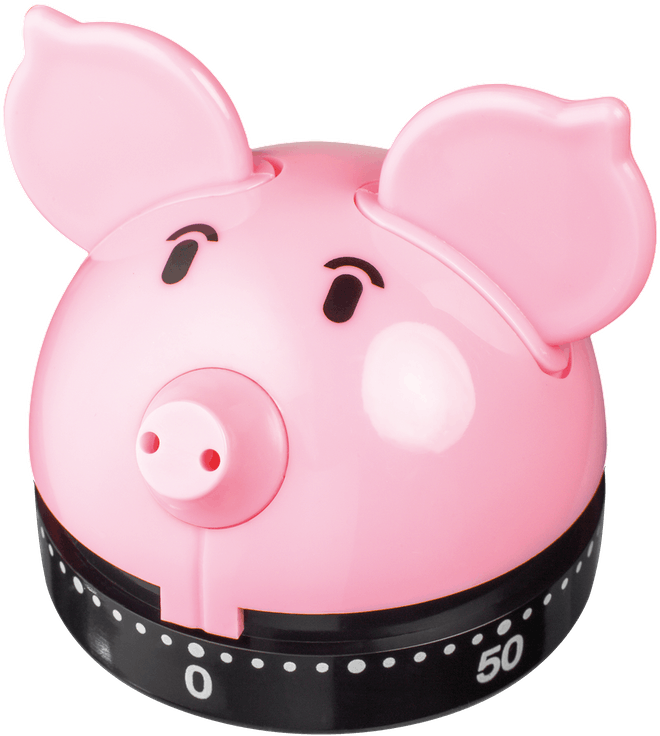 Judge Kitchen  Piggy Timer,